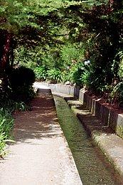 Ein künstlicher Bewässerungskanal (Levada)