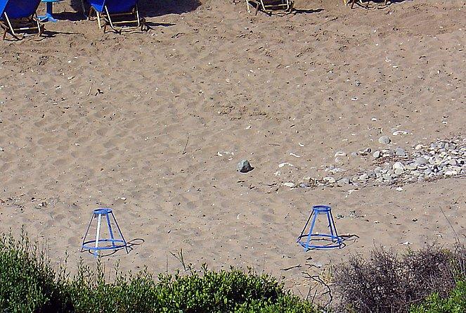 Schutz der schwer auffindbaren Gelege der Meeresschildkröte vor dem Menschen, aufgestellt und überwacht von Archelon